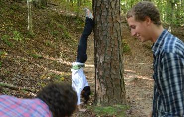 Mt-Handstand
